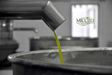L'olio e le sue qualità che fanno bene alla nostra salute