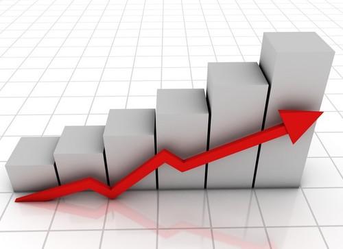 Mercato in ripresa per l'olio extravergine d'oliva